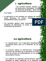 SEMANA 05-AGRICULTURA.ppt