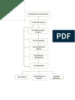 trabajo estructura organizacional