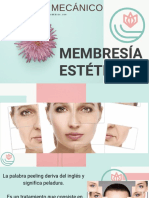 3-1-PEELING MECANICO.pdf