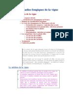 Les_maladies_fongiques_de_la_vigne