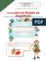 ACTIVIDAD UNIDADES DE MEDIDA DE SUPERFICIE QUINTO