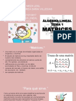Las matrices