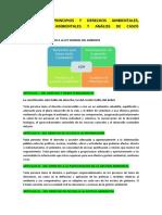 SEMANA 3 - PRINCIPIOS Y DERECHOS AMBIENTALES, AUTORIDADES AMBIENTALES Y ANÁLISS DE CASOS AMBIENTALES
