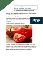 Cultivar tomate en casa