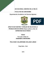 REDACCION DE TESIS SOLANO(correccion)