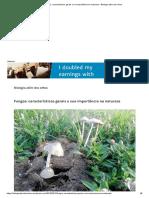 Fungos_ características gerais e sua importância na natureza – Biologia além dos olhos.pdf