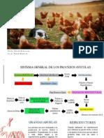 TIPOS DE PRODUCCIÓN (1)