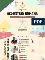 Geometría humana.