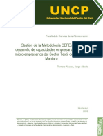 CEFE.pdf