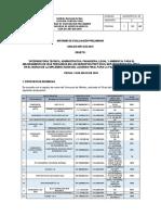 Informe de Evaluación Preliminar