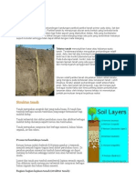 Tekstur dan struktur tanah