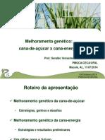 02_Melhoramento_genético_da_cana-de-açúcar-açúcar_x_energia_-_Geraldo_Veríssimo