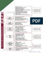 Ruta-aprendizaje-fis1-1-2020