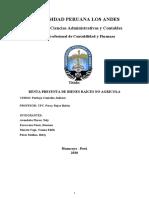 PERITAJE CONTABLE- RENTA PRESUNTA.docx