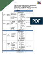 Plan de Evaluación Virtual Seminario de Investigación 2 INTENSIVO CIEN 2020.docx