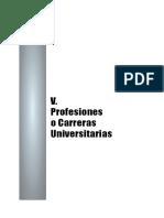 CarrerAS PROFESIONALES 2011-14