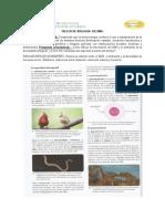 TALLER DE BIOLOGIA Decimo (2).docx