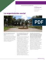 la_organizacion_social