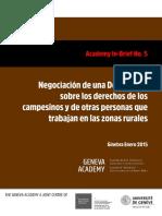 In-Brief sobre la Declaracion_campesinos_ES