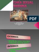 TEMA 1 anatomia
