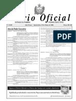 diariooficial290306