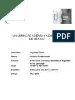 SDFS_U2_EA_Jpia