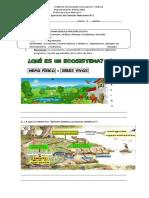 Ecosistema-adaptaciones-Guía-N°1
