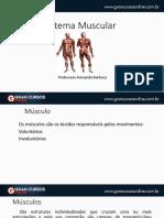 Sistemamuscular.pdf
