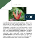 Aprendizagem Formal.pdf