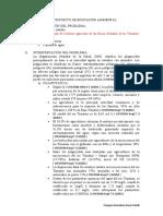 IDENTIFICACIÓN-DEL-PROBLEMA (3)