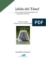 Resumen_libro_A_la_Salida_del_Túnel_JBC_2011