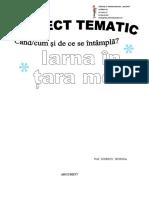 proiect_tematic_iarna_20172018.doc