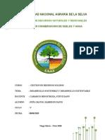 ensayo desarrollo sostenible y sustentable ,Davis Peña