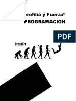 Programa de Halterofilia y Fuerza-2