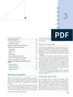 Conective Tissue.pdf