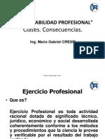 15.Responsabilidad Profesional