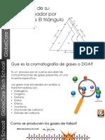 Triangulo de Duval.pdf