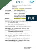 OVERVIEW_SAP_MMSD_cotiz_1