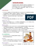 escuelita-nutricion.pdf