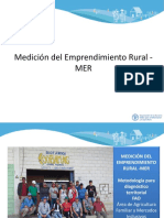 medicion de emprendimiento rural MER