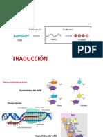 4A-BIOLOGÍA-Clase-Traduccion-del-ARN