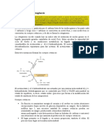 Explicación de la cetogénesis.docx