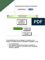 CURSO ACTUALIZACION LECTURA DE CITOLOGIA