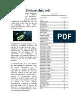 Resumen de Escherichia coli