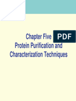 5 Protein Purification Characterization Techniques