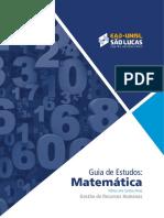 Vilmar dos Santos Alves - Guia de estudos matemática