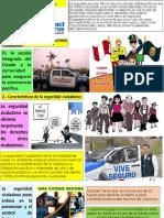 seguridad ciudadana-convertido (1)