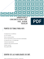 Manual Habilidades  (Conciencia Plena).pdf