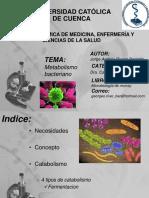 metabolismobacteriano-141107030035-conversion-gate01