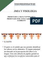 ANATOMIA Y FISOLOGIA EL GUSTO.pptx